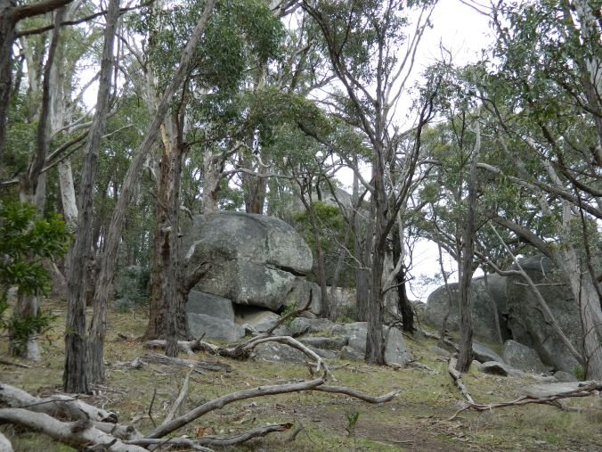 Image of rocks on Mt Alexander