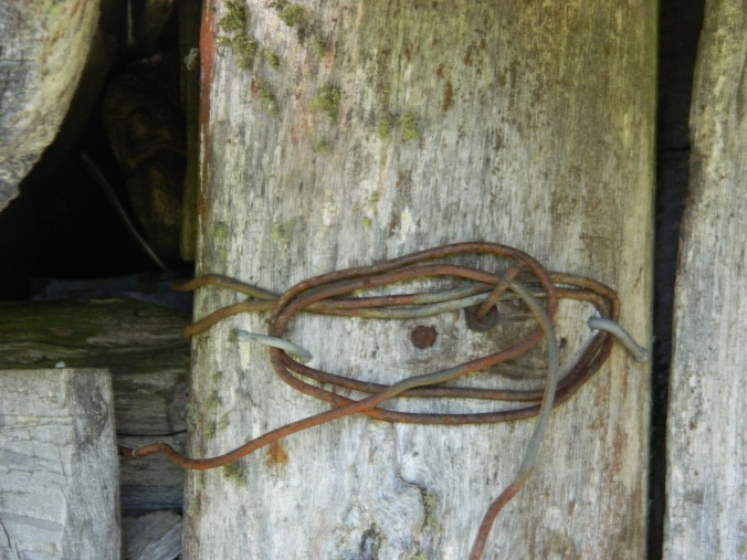 Wire Fastening, Wallace Hut, Falls Creek