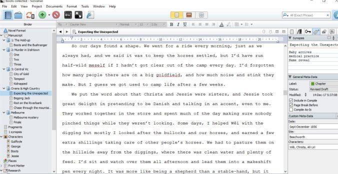 Scrivener editing screen