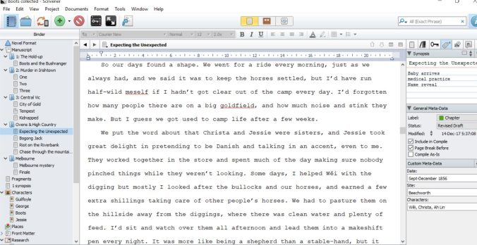 Scrivener editing screen