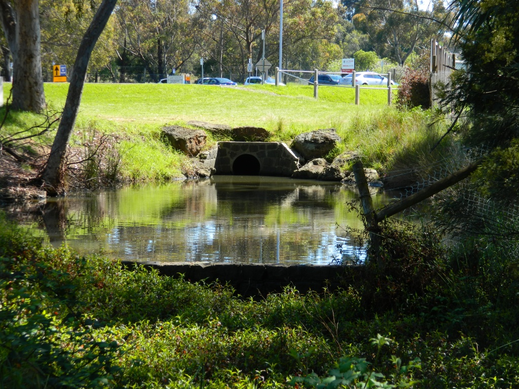 The start of the moat - not glamorous