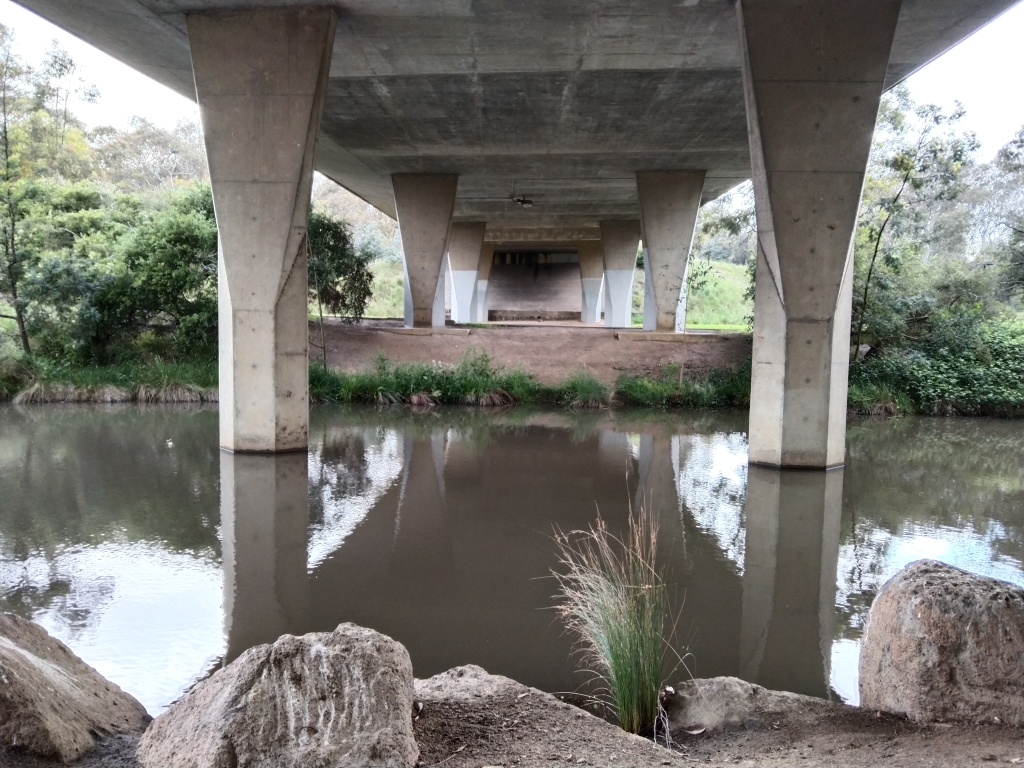 The underneath and pillars holding up the Kingsbury Drive bridge